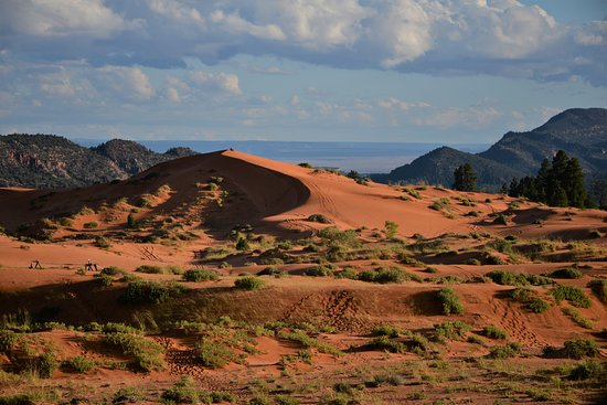 big sand dune at coral national park